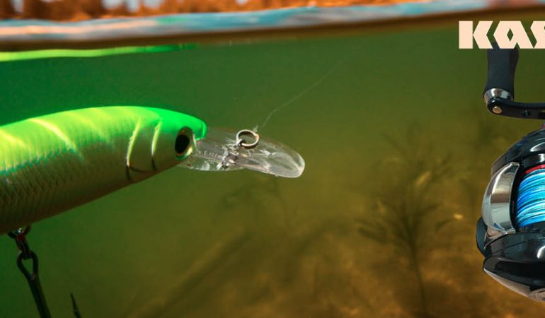 KastKing Royale Legend Baitcasting Fishing Reel Review