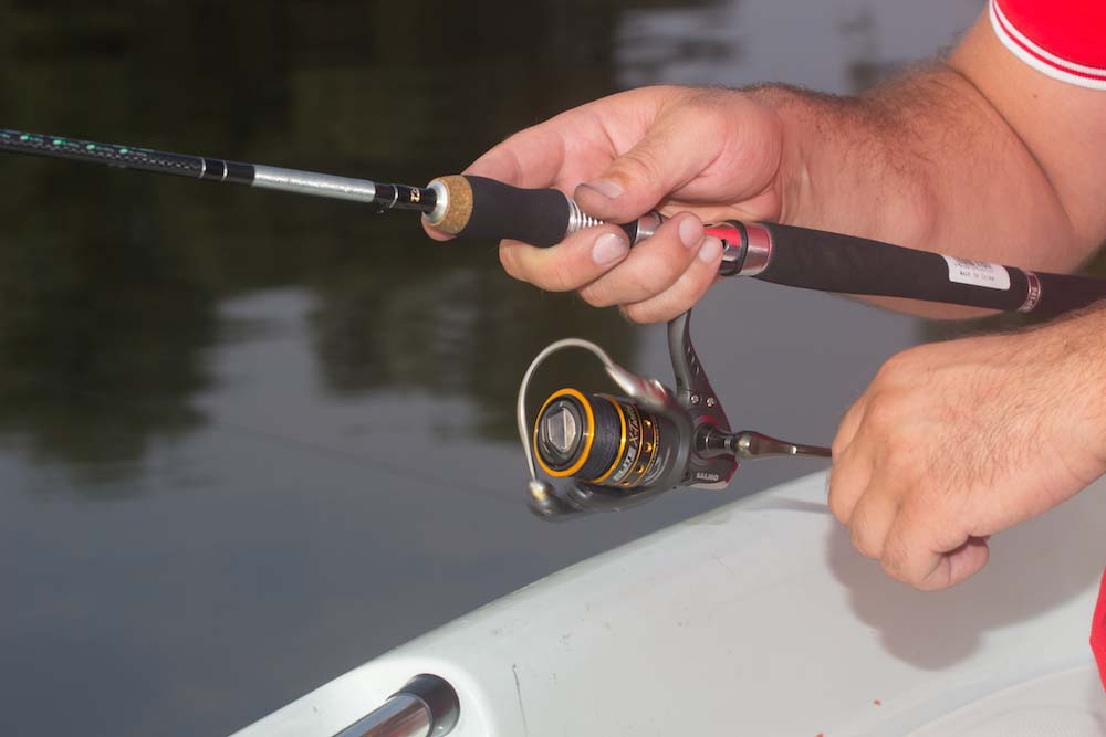 the best spinning rod review