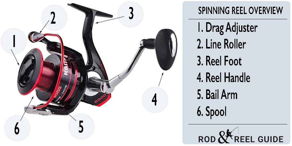spinning reel overview