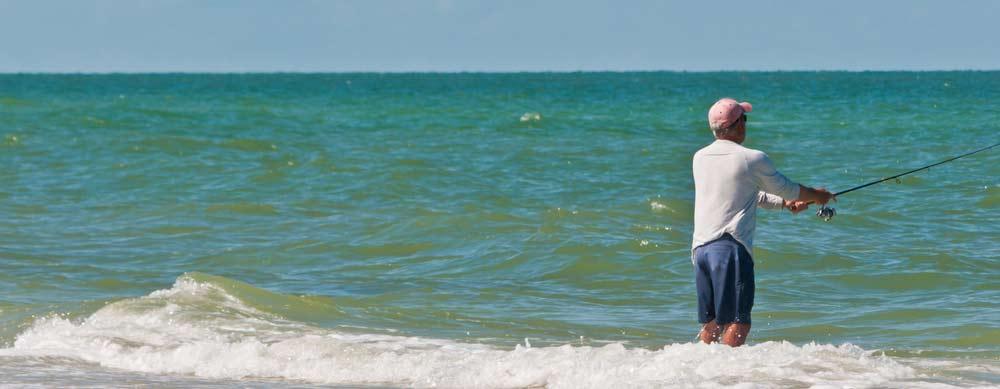 Best surf fishing reel